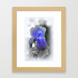 Lily in blue Framed Art Print