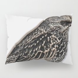 Norfolk sparrow Pillow Sham