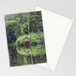 Rainforest Waterway Stationery Cards