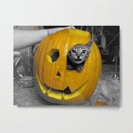 Halloween-Figgy Cat Metal Print
