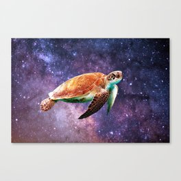 Space Turtle Canvas Print