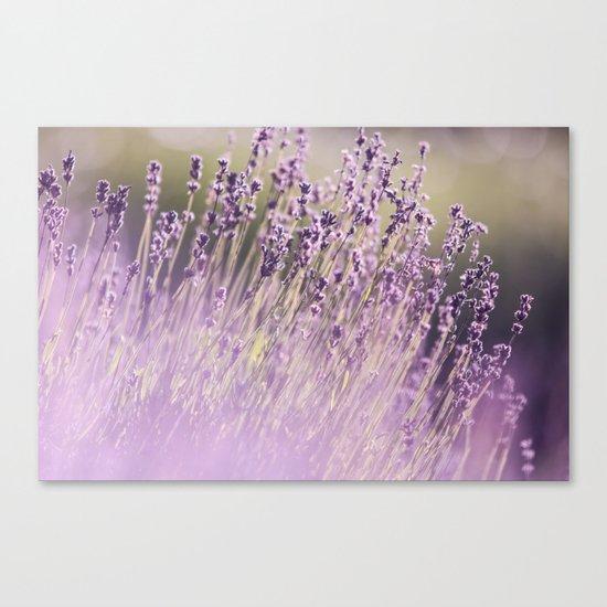 Spring Purple II Canvas Print