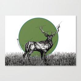 Deer Sun Canvas Print