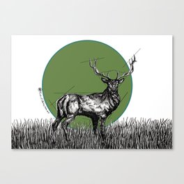 Deer Sun Canvas Print