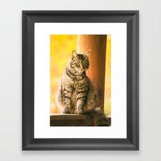I Love Lucy Framed Art Print