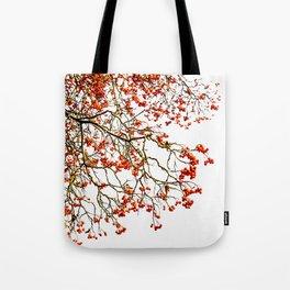 Red rowan fruits or ash berries Tote Bag