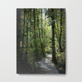Shinrin-Yoku I Metal Print