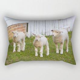 3 Little Lambs Rectangular Pillow