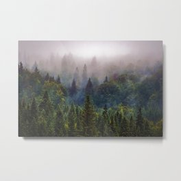 Wander Progression Metal Print
