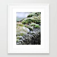 moss Framed Art Prints featuring Moss by Danny Arthurs