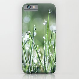 Beautiful wet grass by morning dew water under sunlight macro iPhone Case