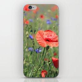 poppy flower no16 iPhone Skin