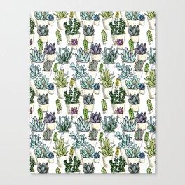 Tiny Cactus Succulents Cacti Canvas Print