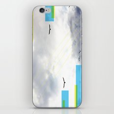 Birds and Lines iPhone & iPod Skin