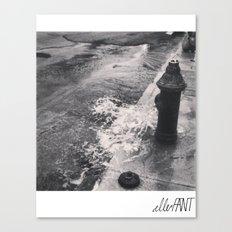 Wet Canvas Print