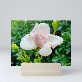 Little Rose Mini Art Print