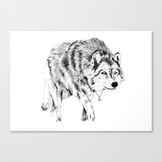 Mister Wolf Canvas Print