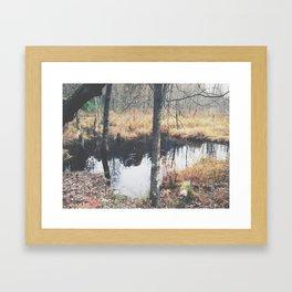 Autumn 8 Framed Art Print