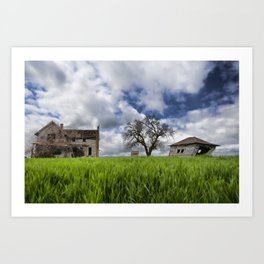 Old House In Field Art Print