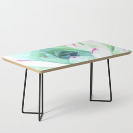 Cactus succulent in green and pink Coffee Table