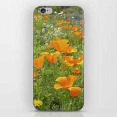 california poppy VIII iPhone & iPod Skin