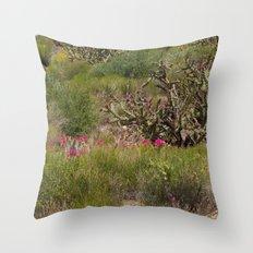 Painted Desert - VI Throw Pillow