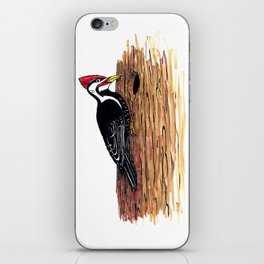 Pileated Woodpecker iPhone Skin