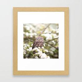 Chouette nature Framed Art Print