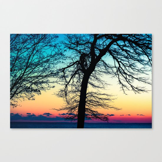 More Than I Can Say Canvas Print
