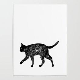 Cat Anatomy Poster