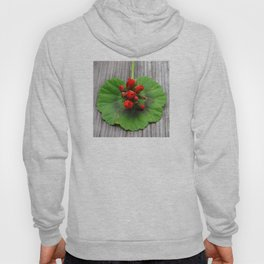 Exotic Green Leaf, Red Flowers on Antique Wood Hoody