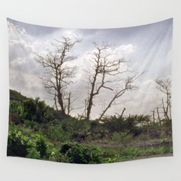 Vue Pointe II Wall Tapestry