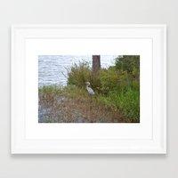 crane Framed Art Prints featuring crane by Tiffany Davis Kornacki