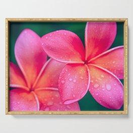Aloha Hawaii Kalama O Nei Pink Tropical Plumeria Serving Tray