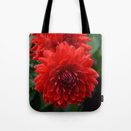 Fresh Rain Drops - Red Dahlia Tote Bag