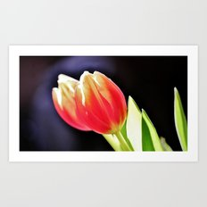 Les Tulipes Art Print