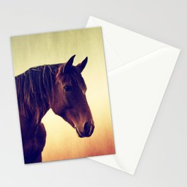 Western horse in porträit Stationery Cards