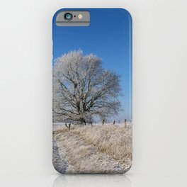 Winter Idyll In The North Of Germany With Majestic Old Tree iPhone Case