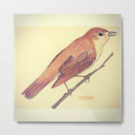 Veery Metal Print