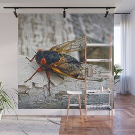 Red Eyed Cicada Wall Mural
