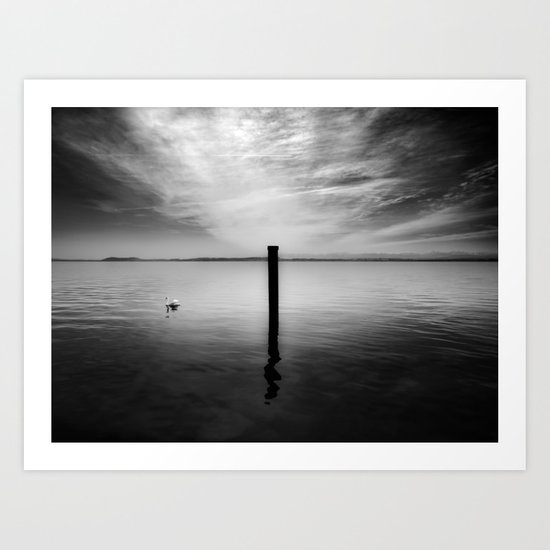 Lake and Swan. Landscape Photography. Art Print