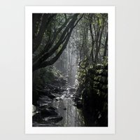 gore Art Prints featuring Gore Cove Rainforest by Lost In Nature Photography