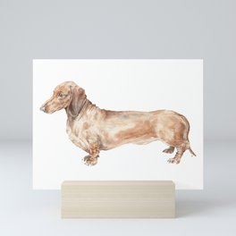 A long dog: Dachshund doxie puppy dog watercolor pet portrait Mini Art Print