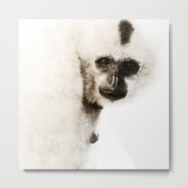 Crested Gibbon Metal Print