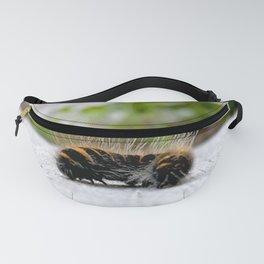 Wannabe Tiger (Fox Moth Caterpillar) Fanny Pack