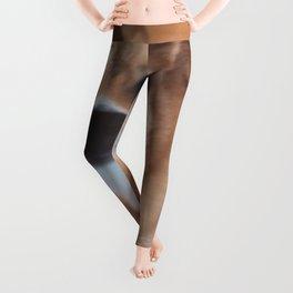 Bash Leggings