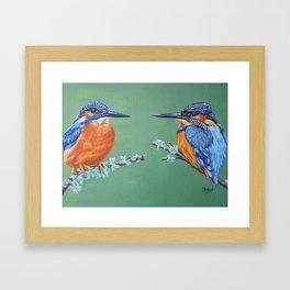 Two Kingfishers Framed Art Print