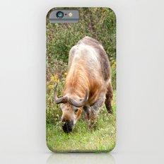 The Endangered Takin iPhone 6s Slim Case