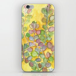 Warm and Cool, Soft Colored Succulent iPhone Skin
