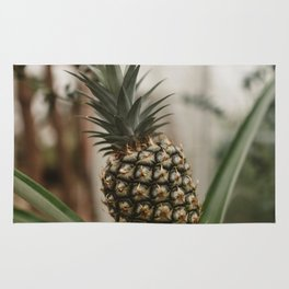 Pineapple Plant Rug